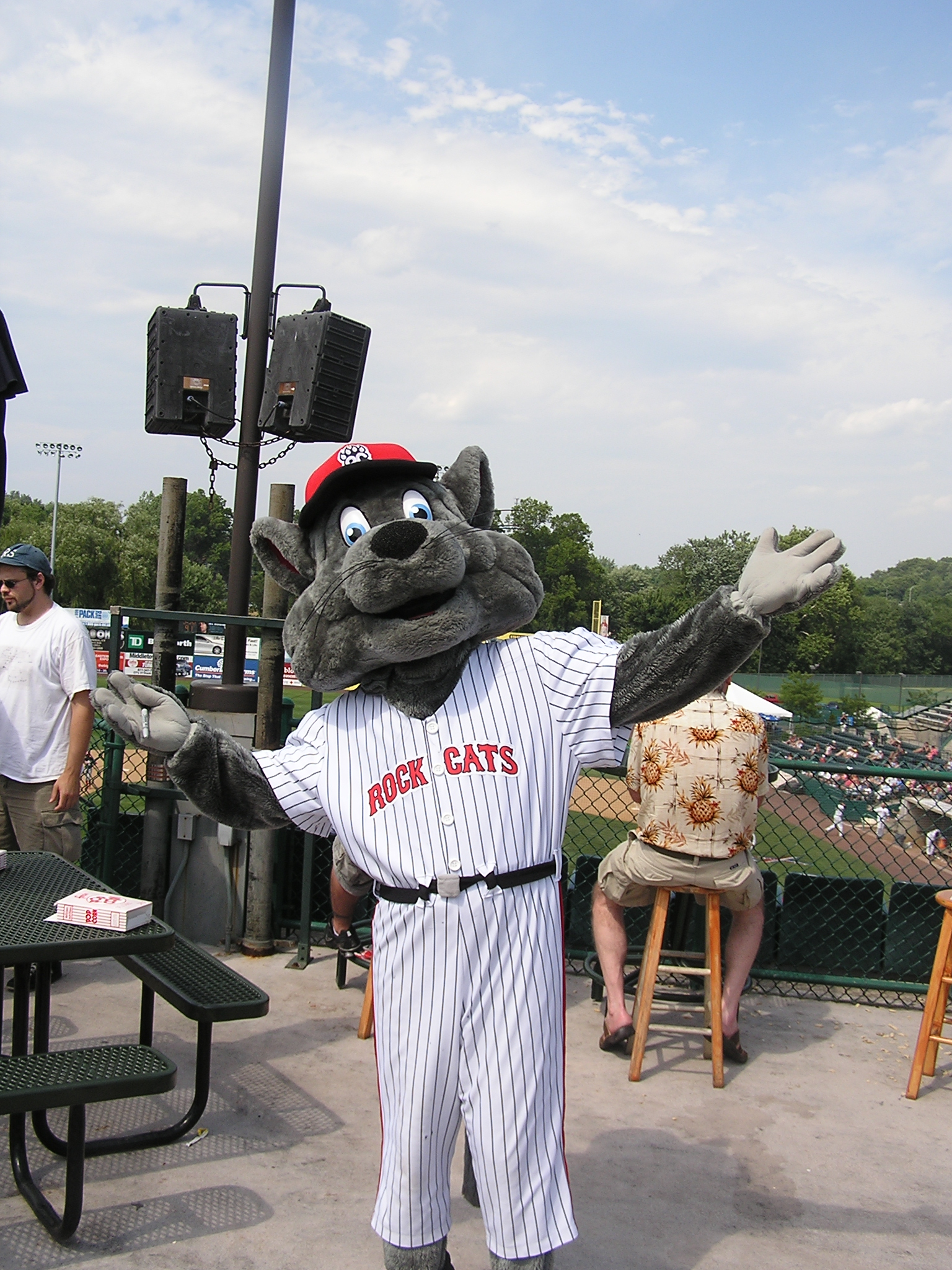 Rocky, the Rock Cats Mascot - New Britain Stadium